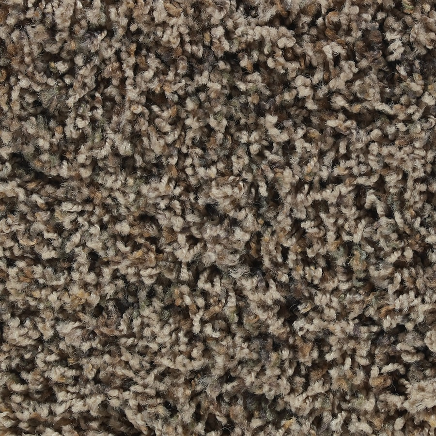 STAINMASTER Active Family Austere Dover Textured Indoor Carpet