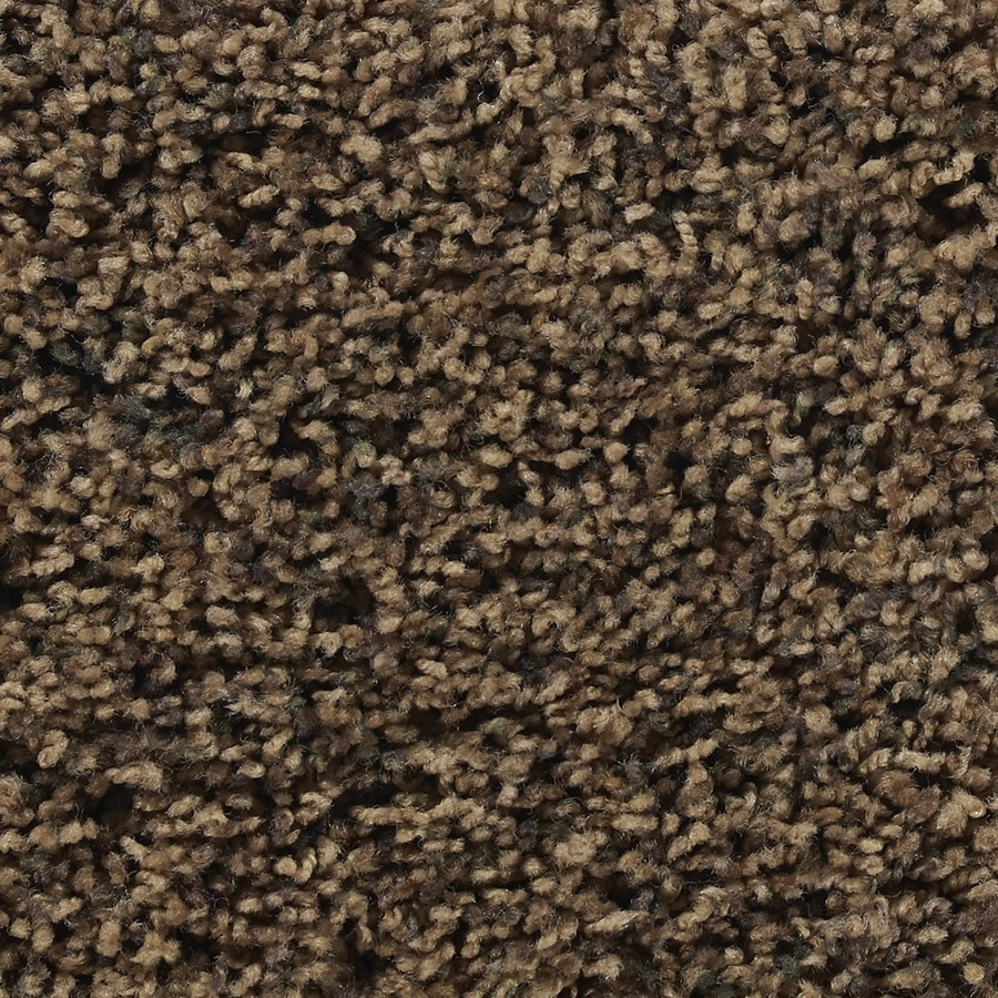 STAINMASTER Active Family Austere Newport Textured Indoor Carpet