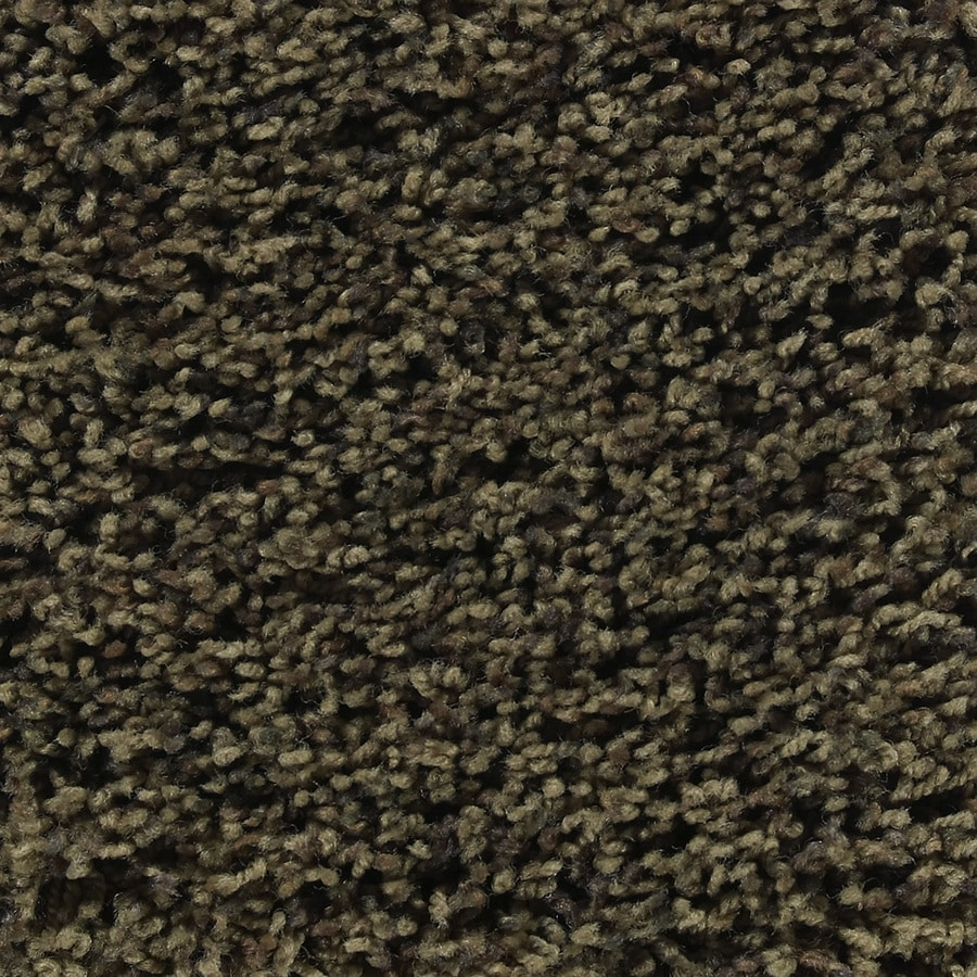 STAINMASTER Active Family Austere Odessa Textured Indoor Carpet