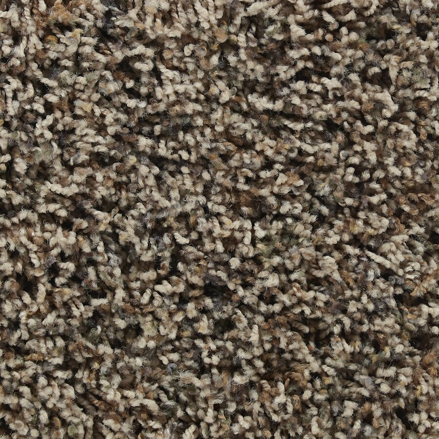 STAINMASTER Active Family Austere Coolidge Textured Indoor Carpet