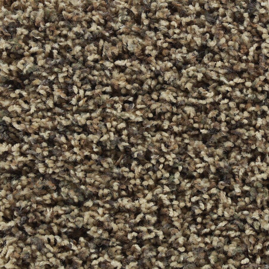 STAINMASTER Active Family Austere Hayden Textured Indoor Carpet