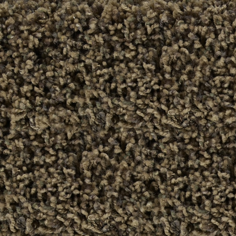 STAINMASTER Active Family Austere Sedona Textured Indoor Carpet