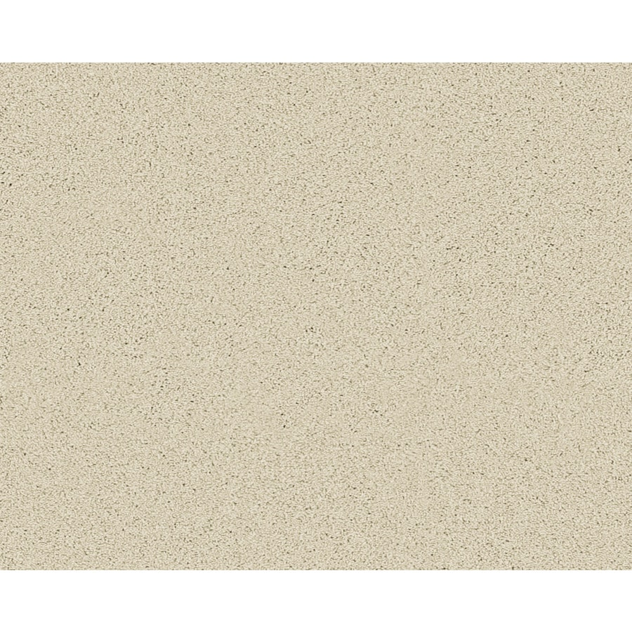 STAINMASTER Active Family Fresh Breeze Bremen Textured Indoor Carpet