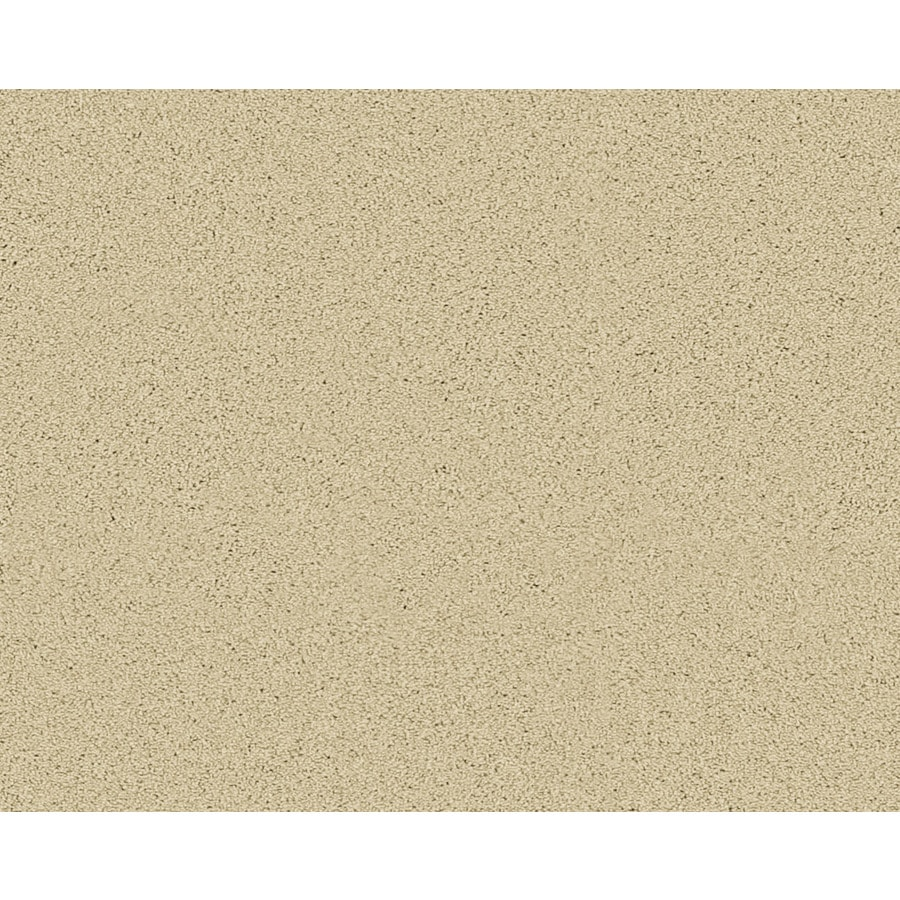 STAINMASTER Active Family Fresh Breeze Fairmount Textured Indoor Carpet