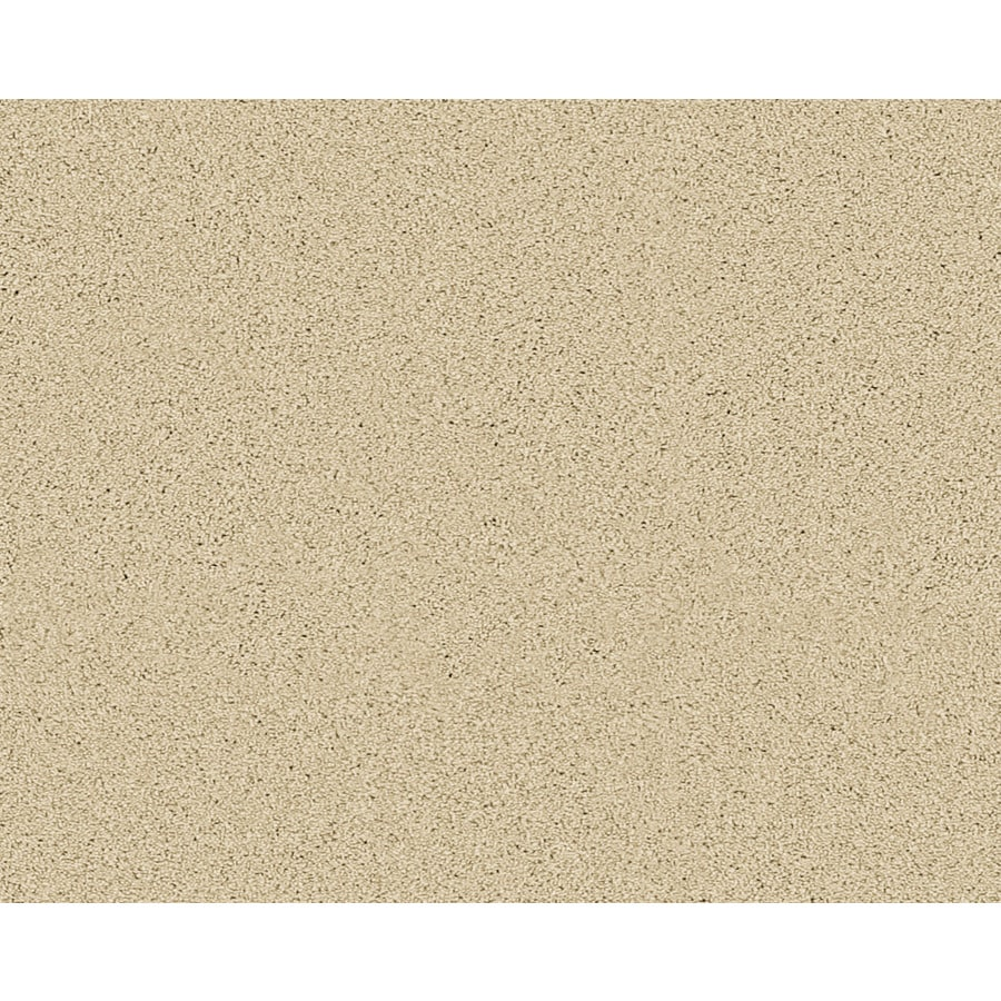 STAINMASTER Active Family Fresh Breeze Hammond Textured Indoor Carpet