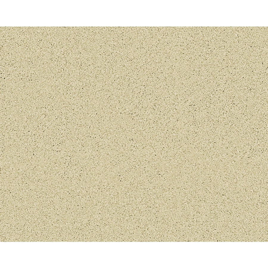 STAINMASTER Active Family Fresh Breeze Marion Textured Indoor Carpet