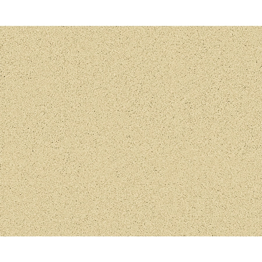 STAINMASTER Active Family Fresh Breeze Spencer Textured Indoor Carpet