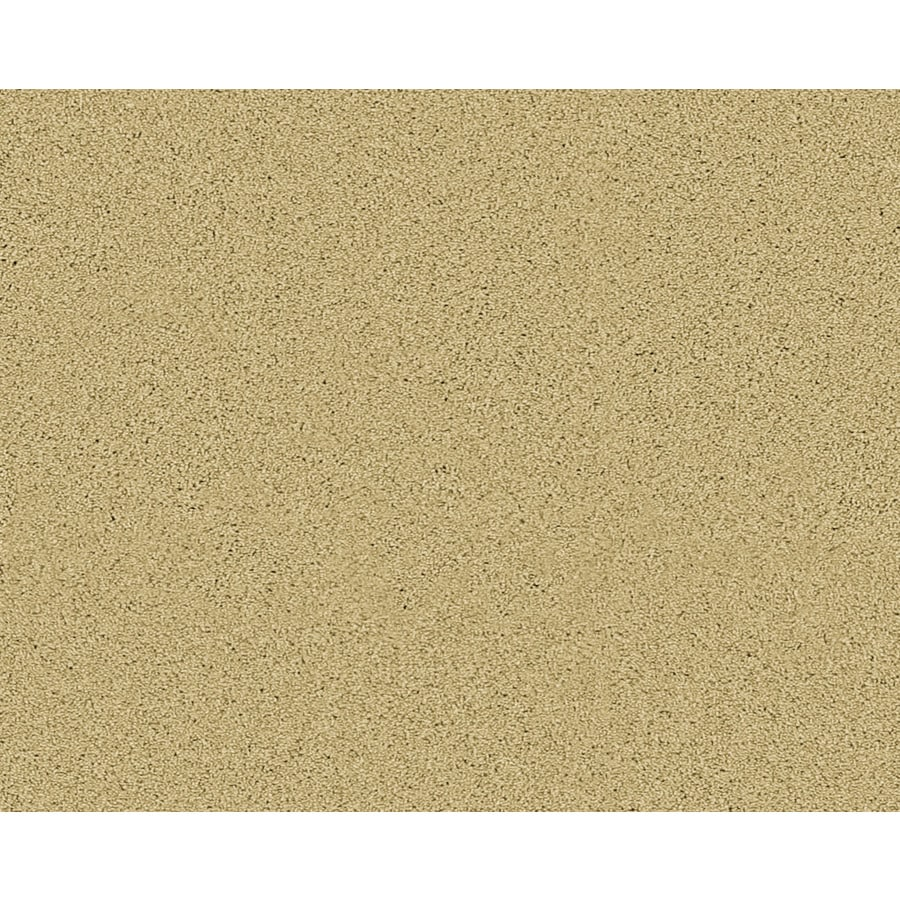 STAINMASTER Active Family Fresh Breeze Yorktown Textured Indoor Carpet
