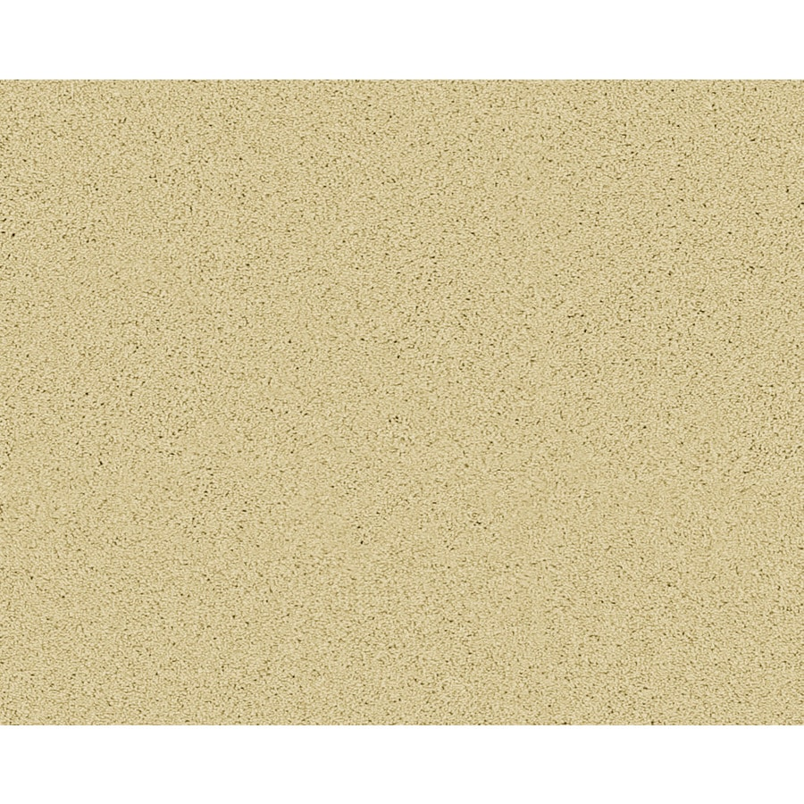 STAINMASTER Active Family Fresh Breeze Wabash Textured Indoor Carpet