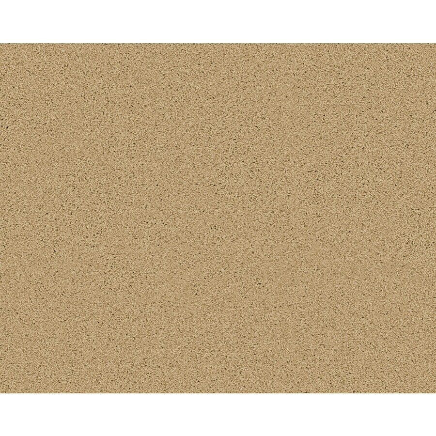 STAINMASTER Active Family Fresh Breeze Lagrange Textured Indoor Carpet