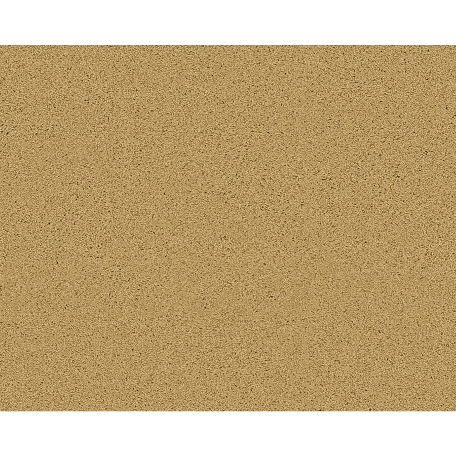 STAINMASTER Active Family Fresh Breeze Flora Textured Indoor Carpet