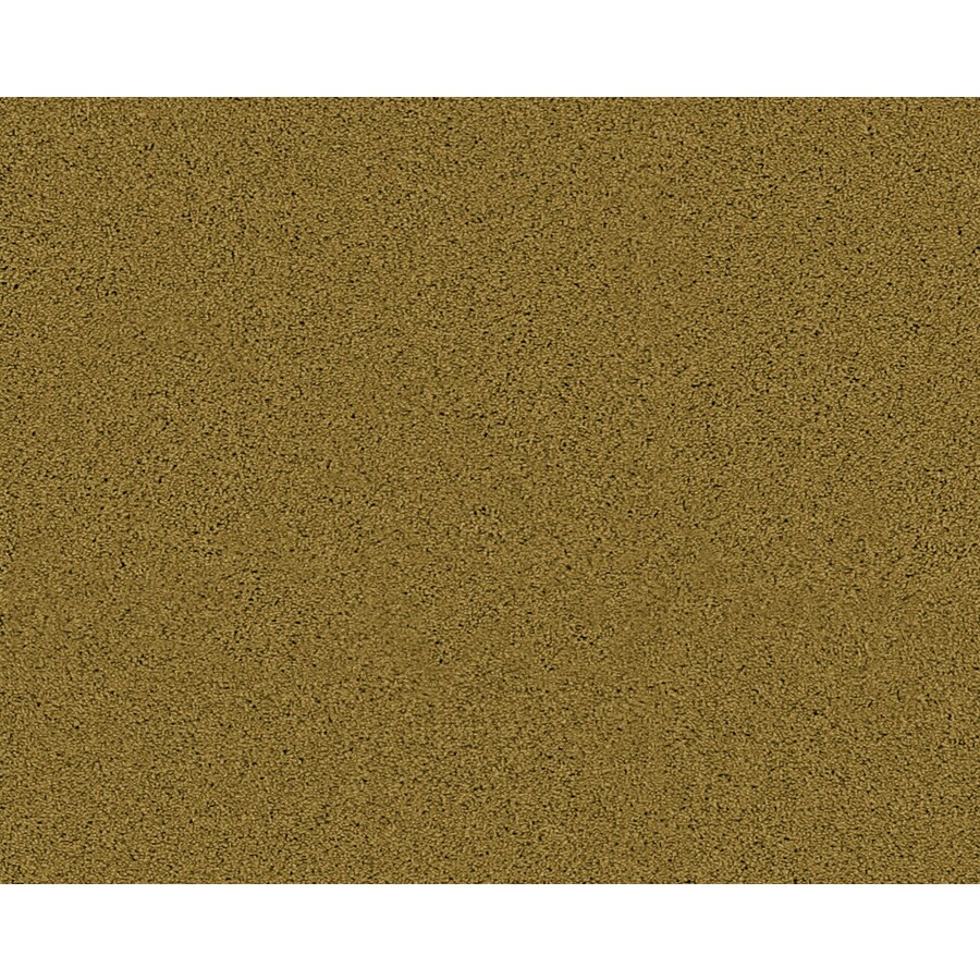 STAINMASTER Active Family Fresh Breeze Westlake Textured Indoor Carpet