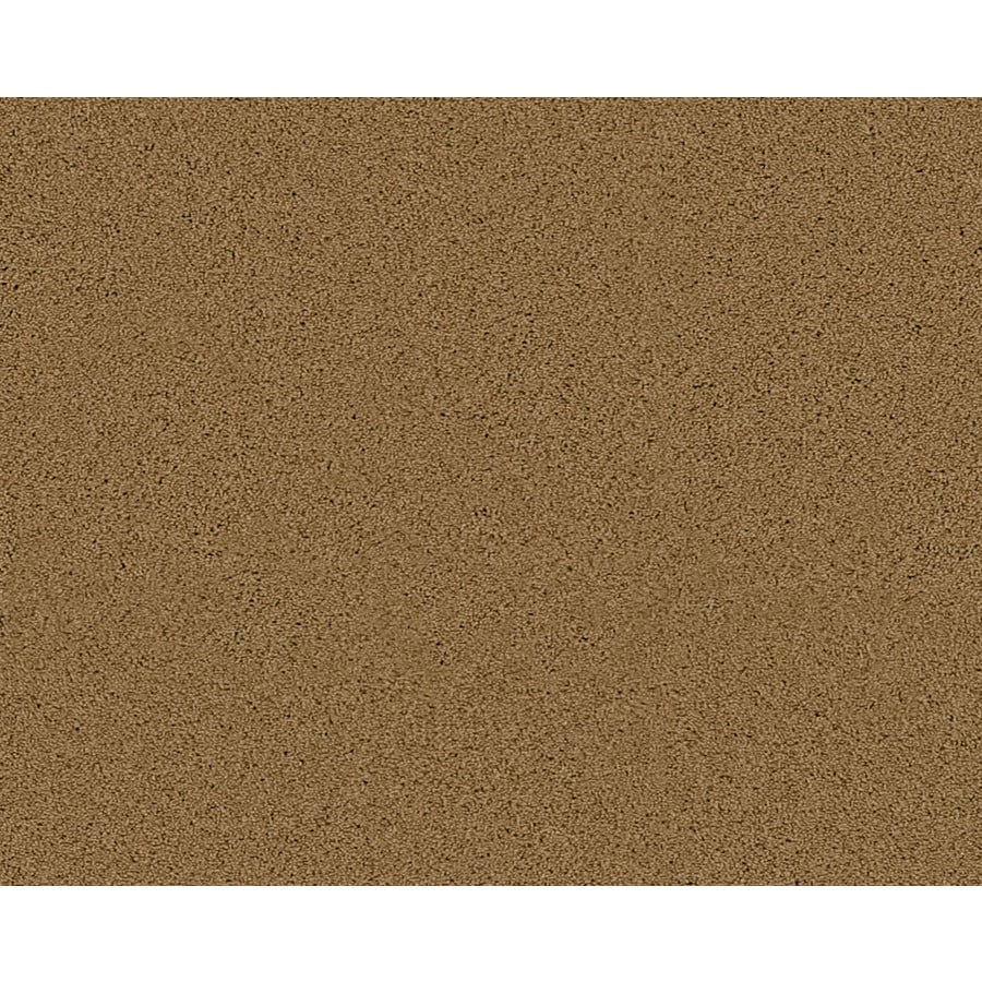 STAINMASTER Active Family Fresh Breeze Bristol Textured Indoor Carpet