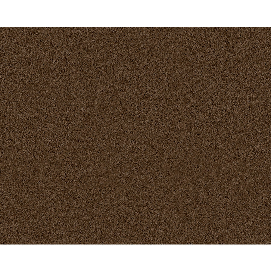 STAINMASTER Active Family Fresh Breeze Limerick Textured Indoor Carpet