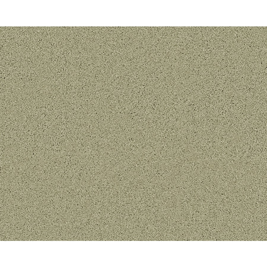 STAINMASTER Active Family Fresh Breeze Sanford Textured Indoor Carpet