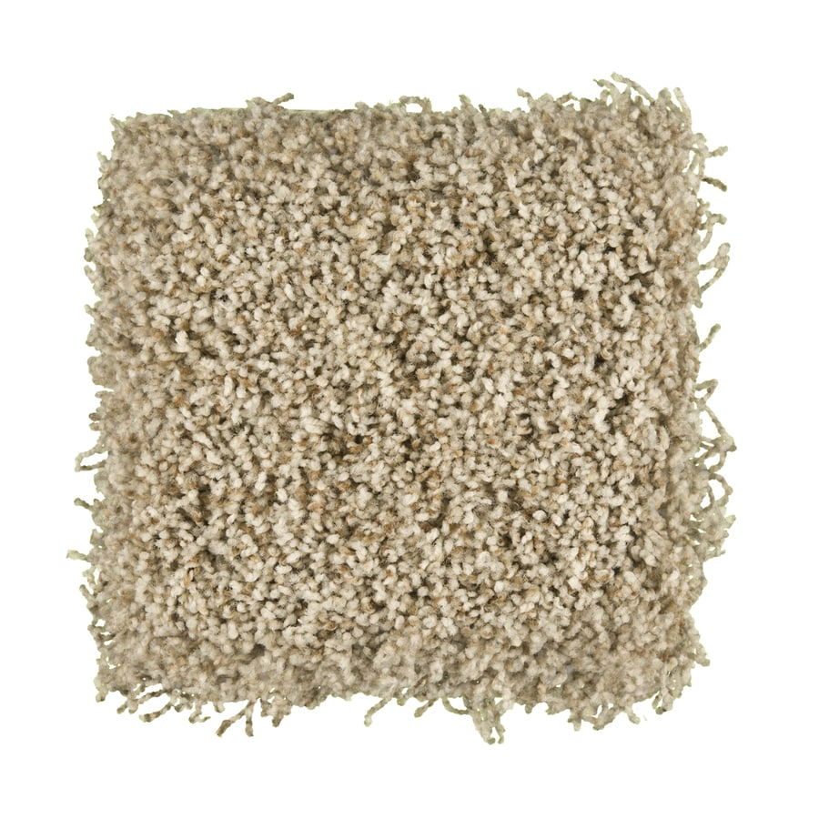 STAINMASTER Active Family Exemplary Chandler Textured Indoor Carpet