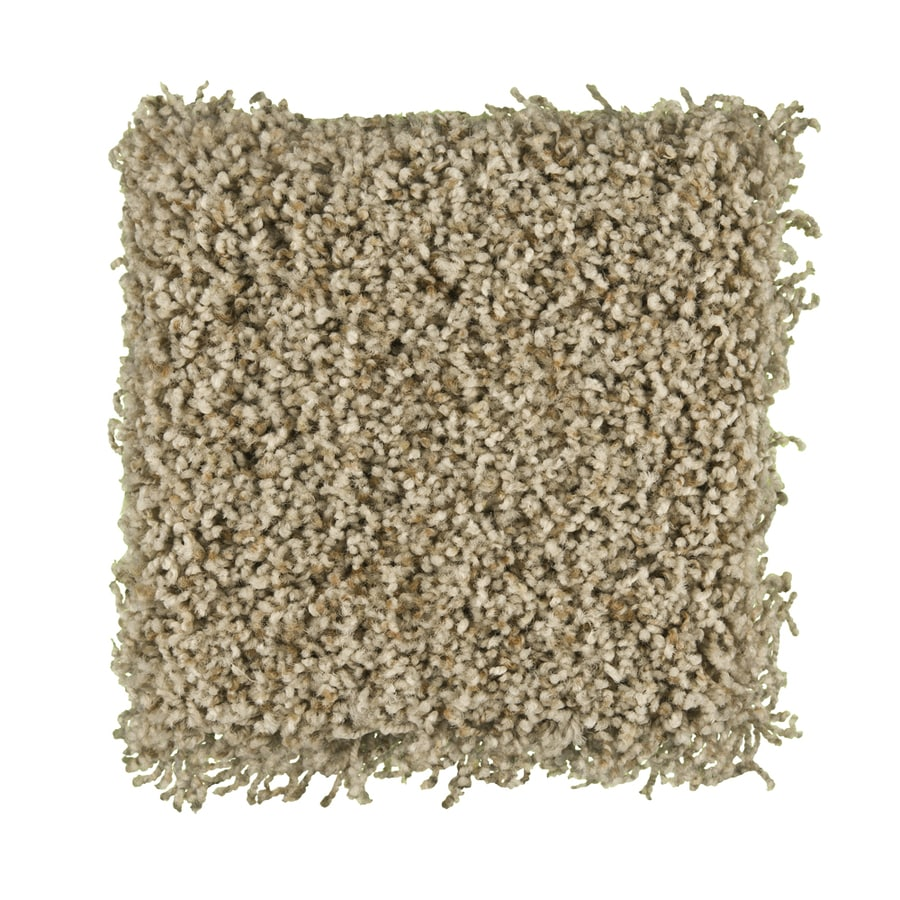 STAINMASTER Active Family Exemplary Charisma Textured Indoor Carpet