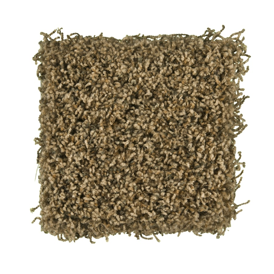 STAINMASTER Active Family Exemplary Brazil Nut Textured Indoor Carpet