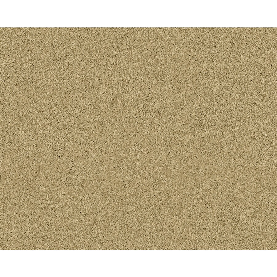 Coronet Active Family Exalted Lone Star Textured Indoor Carpet