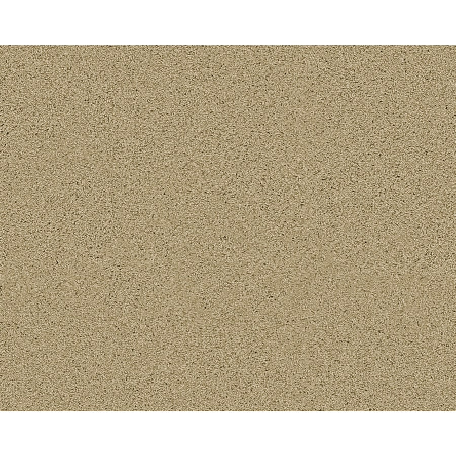 Coronet Active Family Exalted Laguna Textured Indoor Carpet