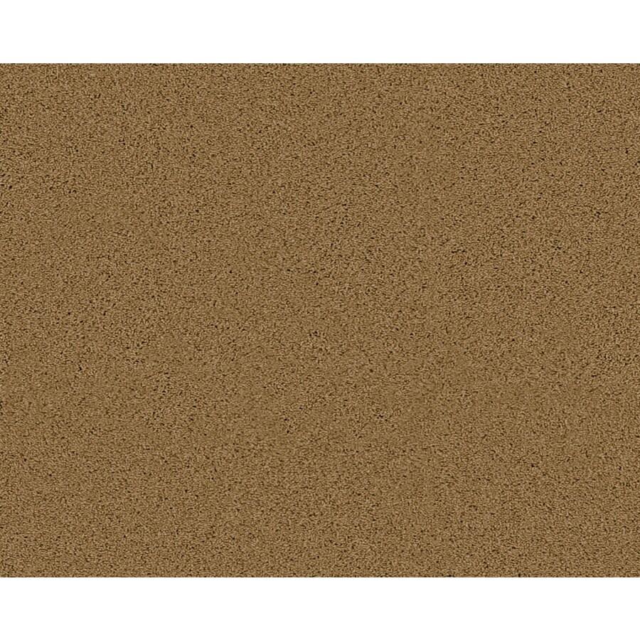 Coronet Active Family Exalted Partridge Textured Indoor Carpet