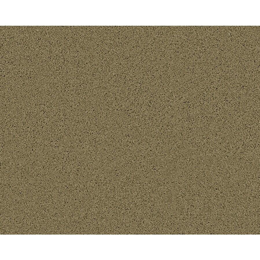 Coronet Active Family Exhilarated Mayflower Textured Indoor Carpet