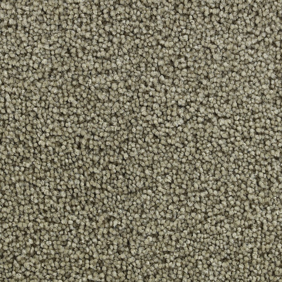 Coronet Active Family Exhilarated Spurlock Textured Indoor Carpet