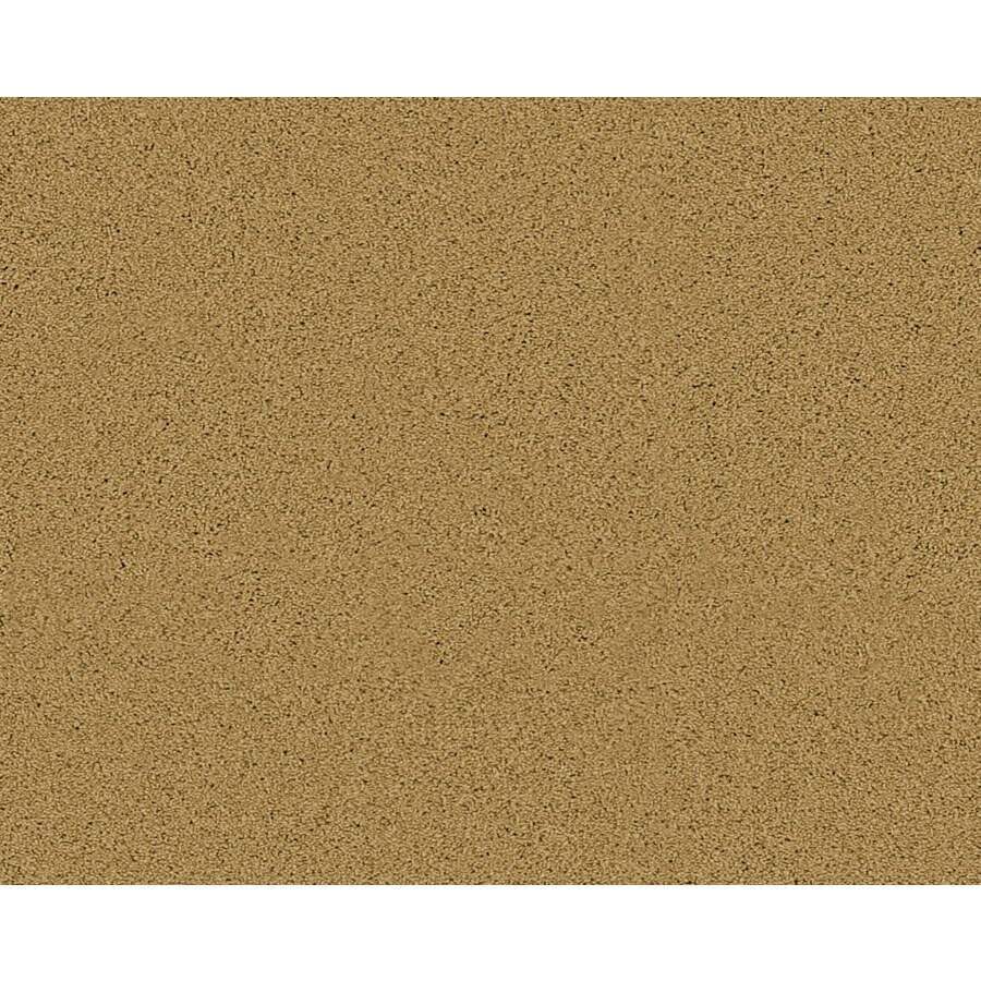 Coronet Active Family Euphoria II Ironwood Textured Indoor Carpet