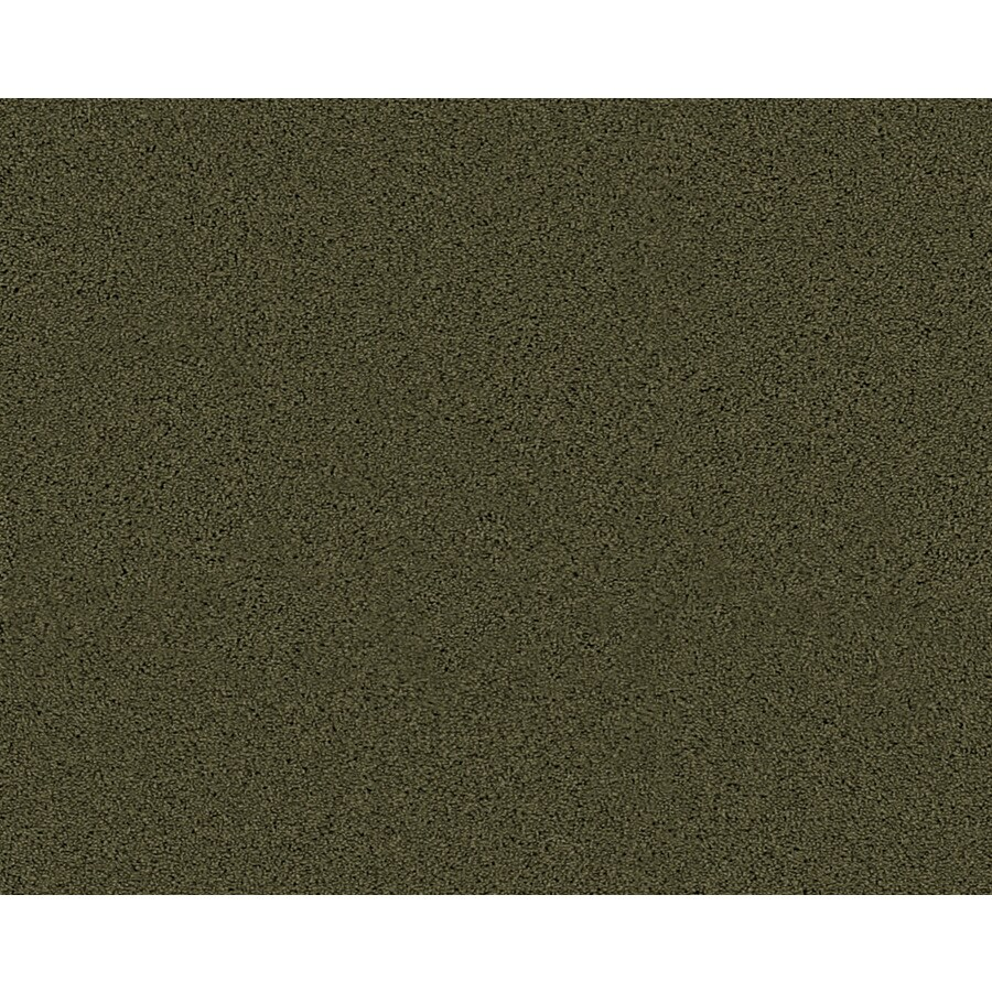 Coronet Active Family Euphoria II Midway Textured Indoor Carpet