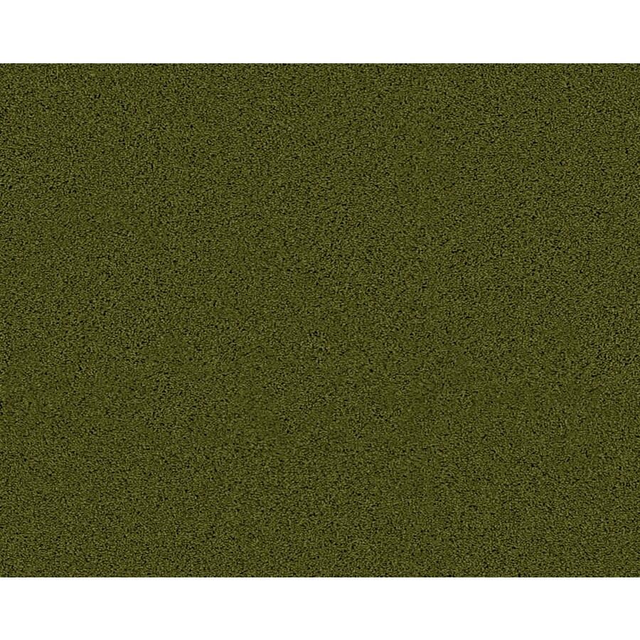 Coronet Active Family Euphoria II Hillside Textured Indoor Carpet