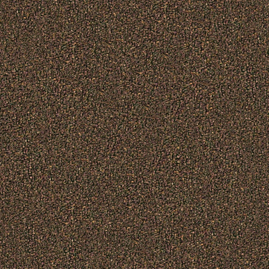 Coronet Stock Carpet Truffle Textured Indoor Carpet