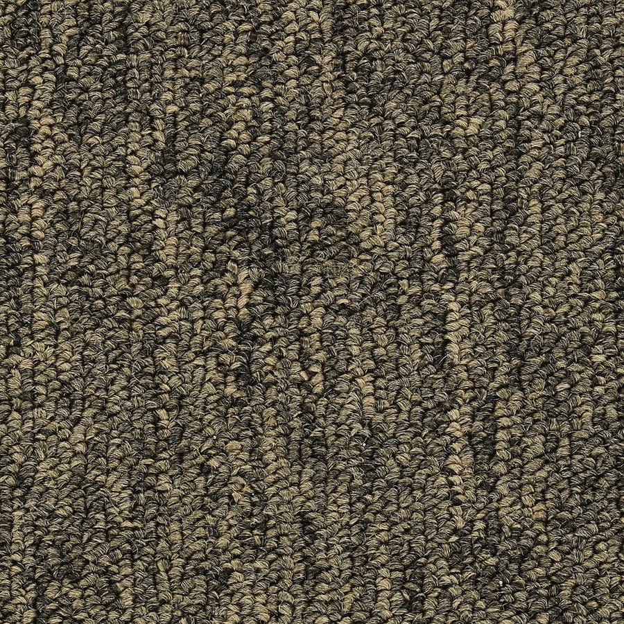 Coronet St653 Machismo Brass Commercial Loop Indoor Carpet