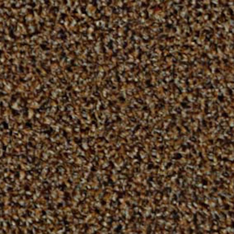 Coronet Top Sail Almond Berber/Loop Interior/Exterior Carpet