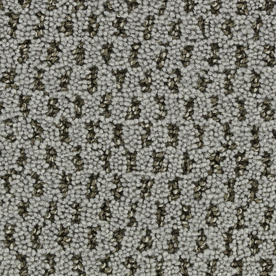 Coronet Uplifting Betterment Textured Interior Carpet