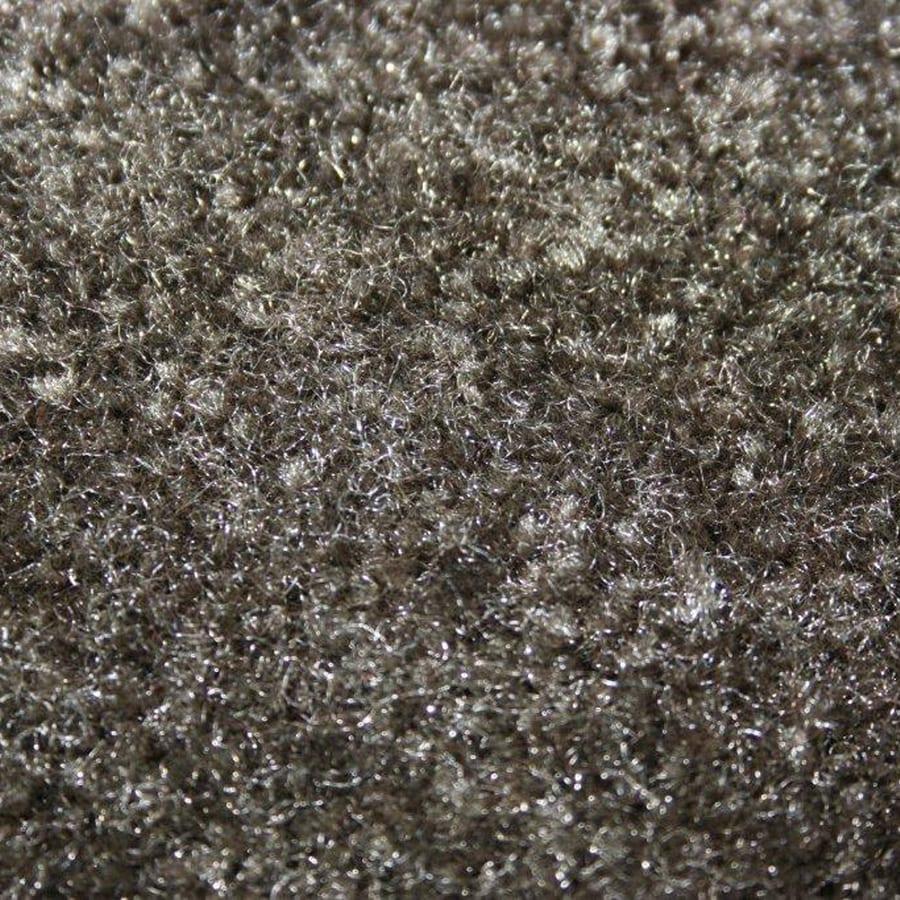 Coronet Feature Buy Eagle's Wing Textured Indoor Carpet