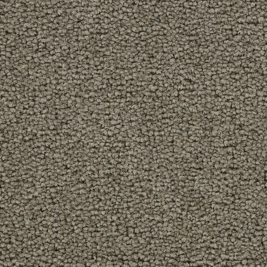 Coronet Warrior Suede Textured Indoor Carpet