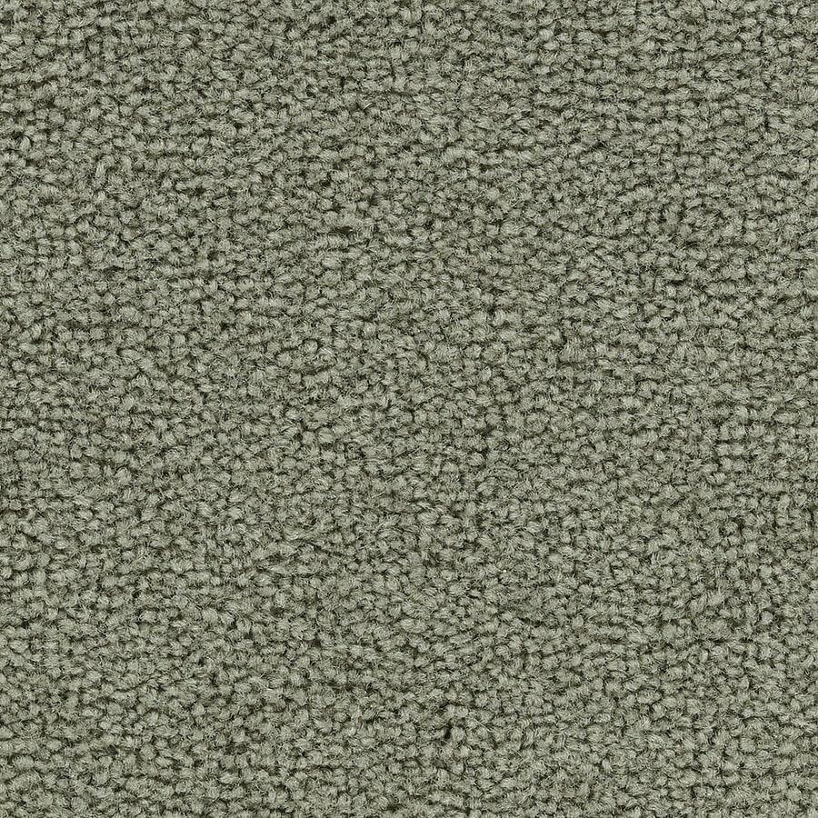 Coronet Warrior Ivy Trellis Textured Indoor Carpet