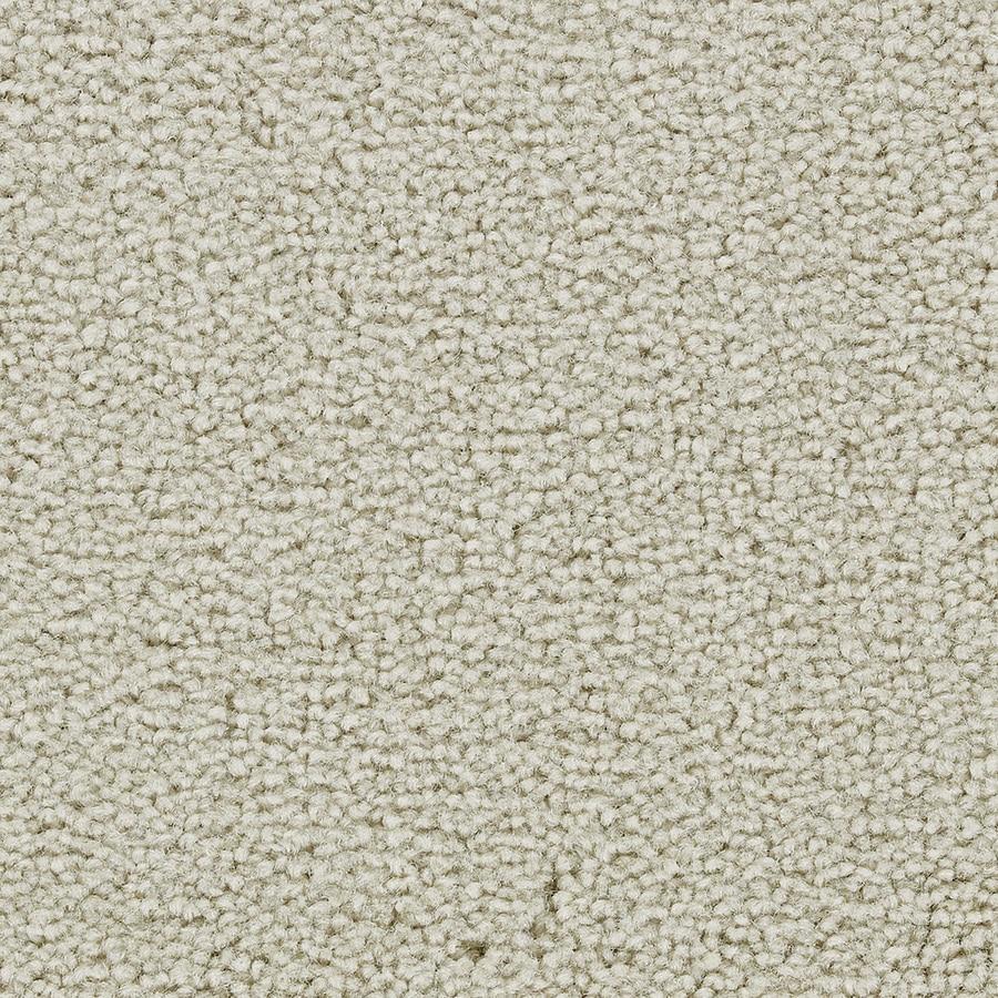 Coronet Warrior Old Lace Textured Interior Carpet