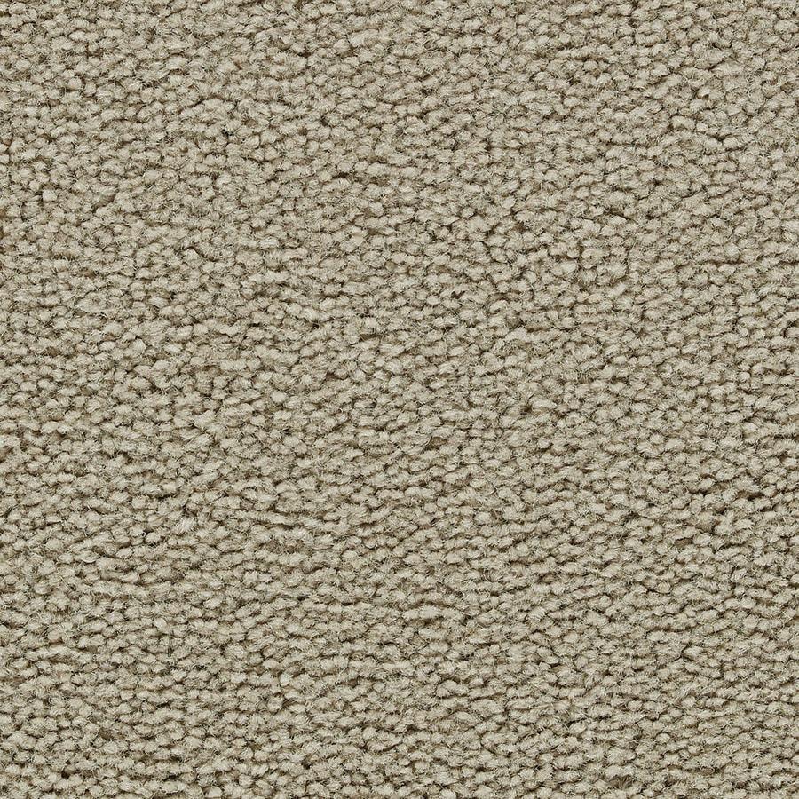 Coronet Feature Buy Lantern Glow Textured Indoor Carpet
