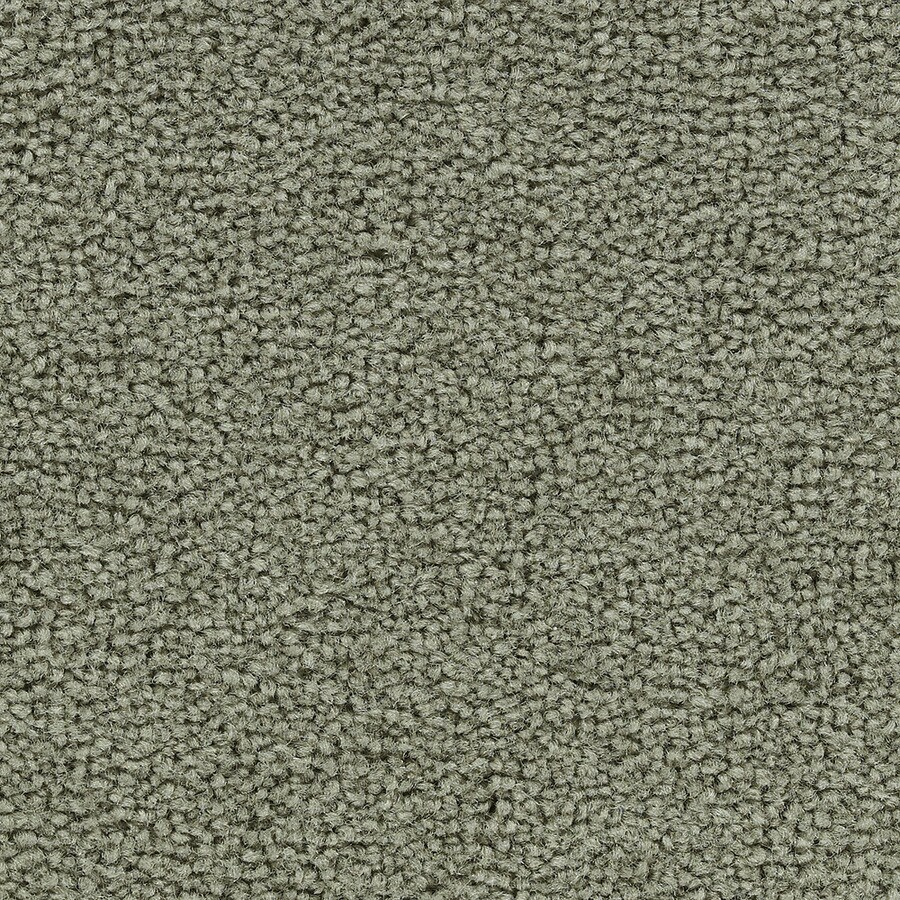 Coronet Big Hearted Ivy Trellis Textured Interior Carpet