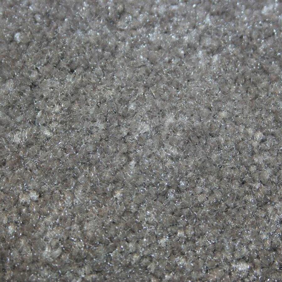 Coronet Big Hearted Frostbite Textured Interior Carpet