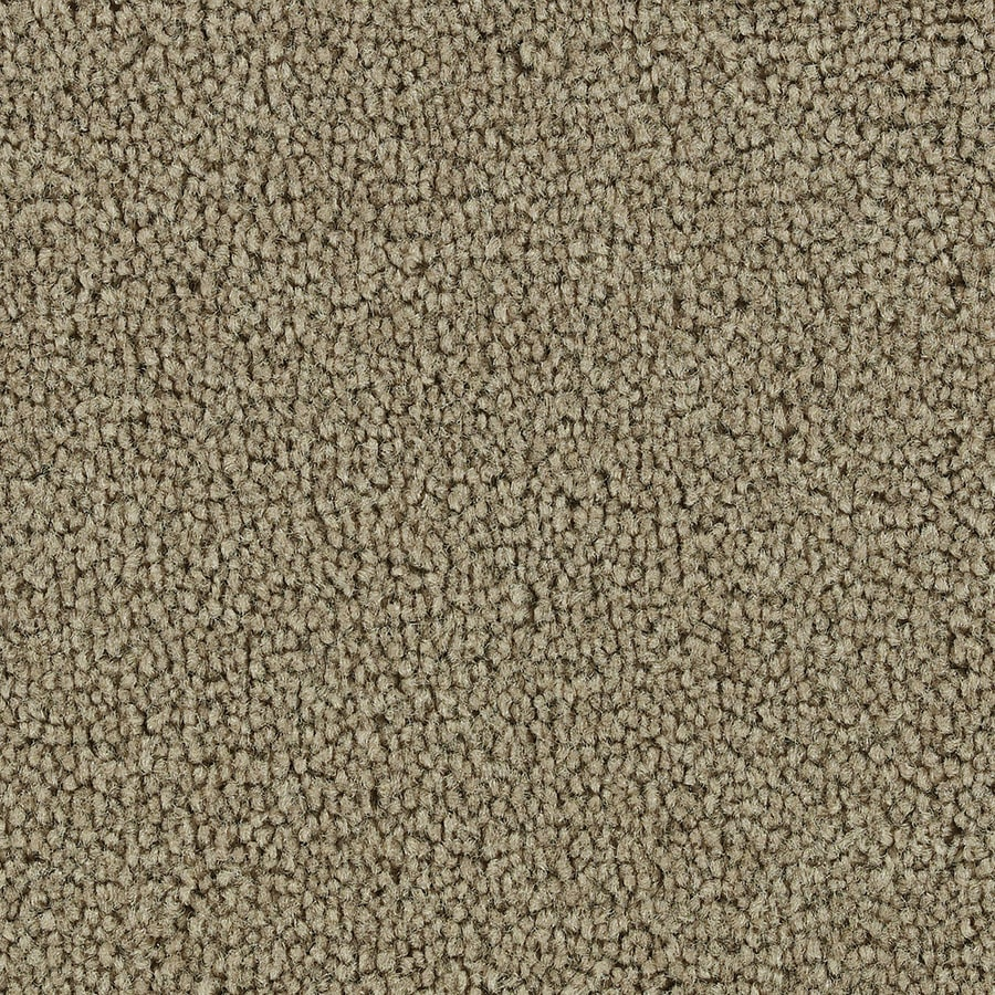 Coronet Big Hearted Medal Of Honor Textured Interior Carpet