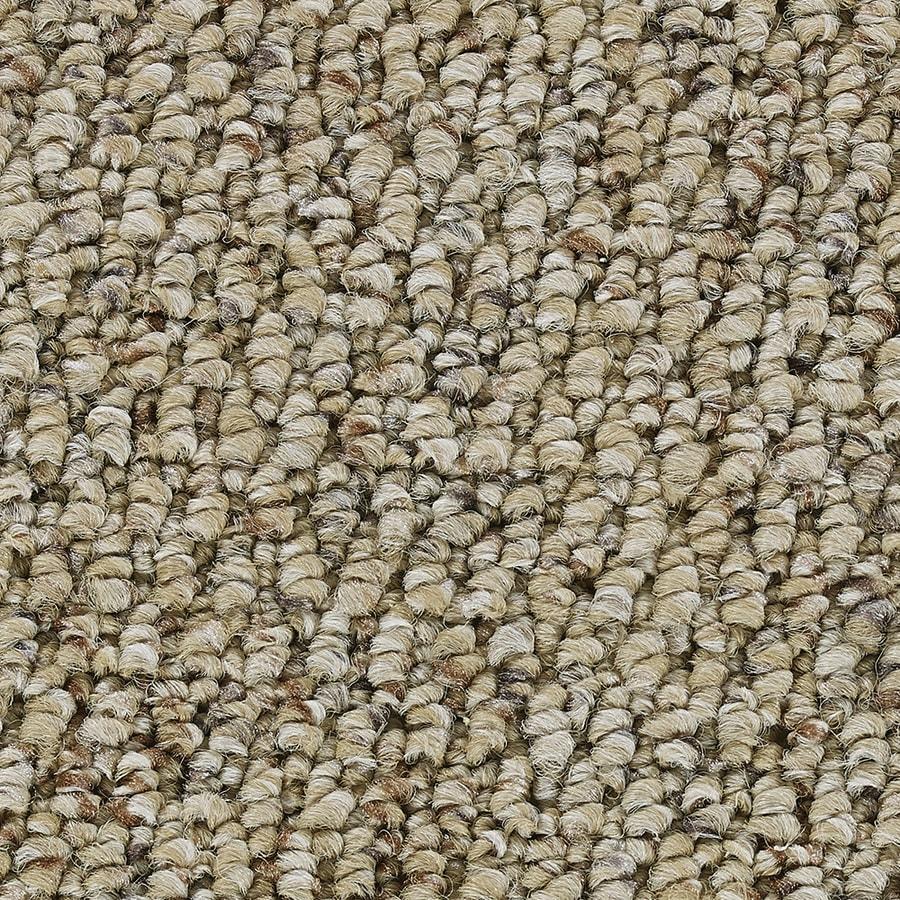 Coronet Program Crucial Berber/Loop Interior Carpet