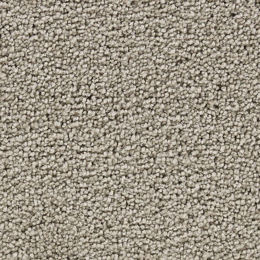 Coronet Program Remarkable Textured Interior Carpet