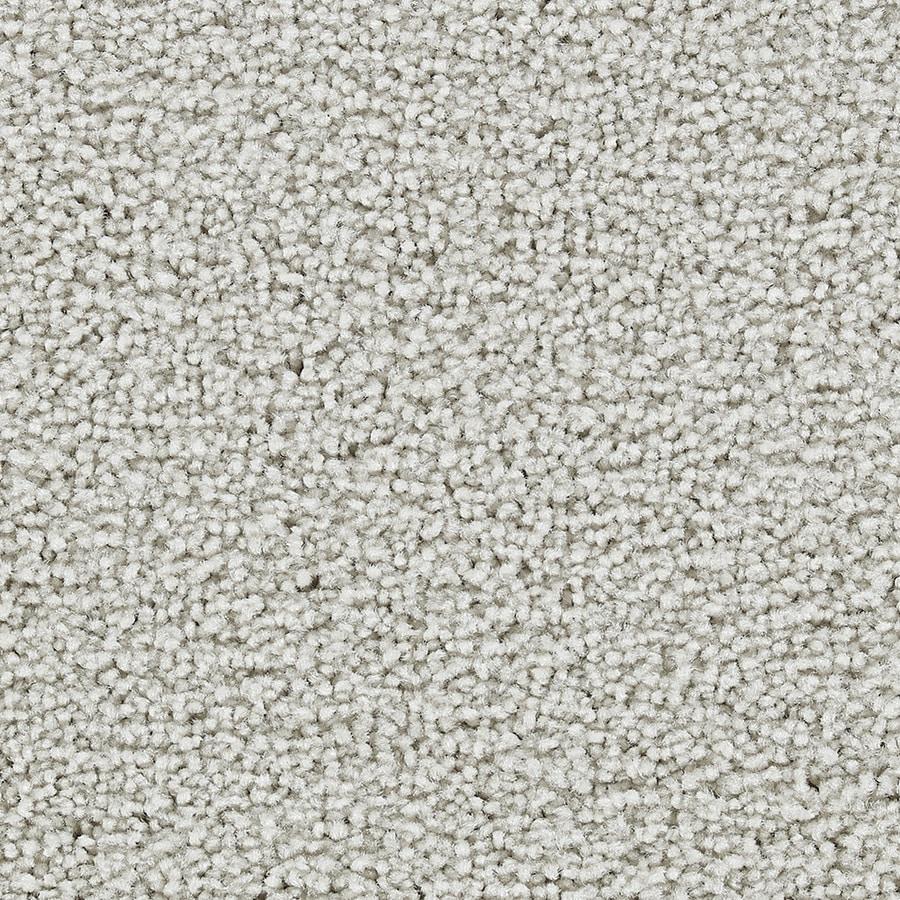 Coronet Program Glorious Textured Interior Carpet
