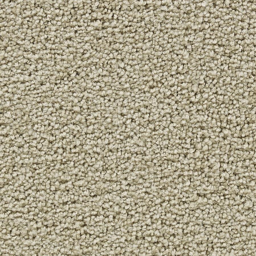 Coronet Program Reputable Textured Interior Carpet