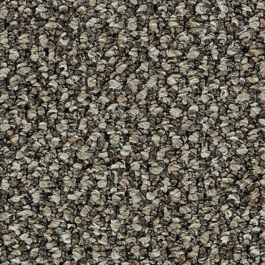 Coronet Velocity Sonic Buff Berber/Loop Interior Carpet