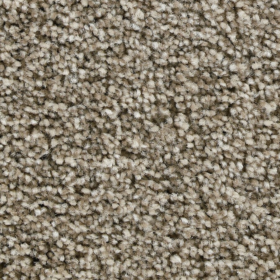 Coronet Ignite Energize Textured Indoor Carpet