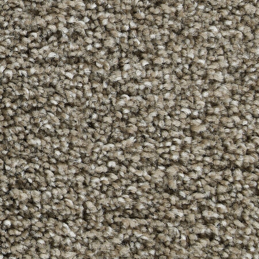 Coronet Ignite Vitalize Textured Interior Carpet