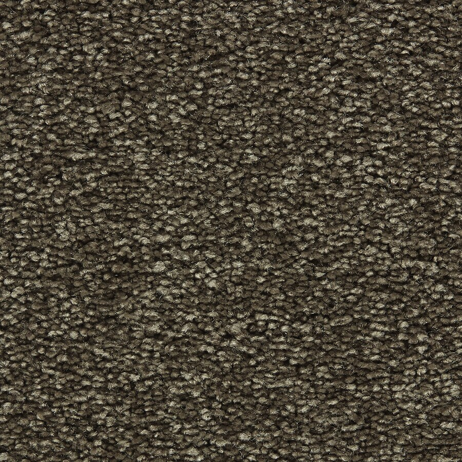 Coronet Centric I Double Espresso Textured Interior Carpet